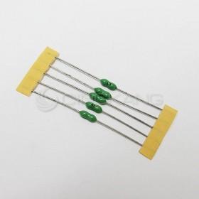 電阻式保險絲 4A 250V(5入)