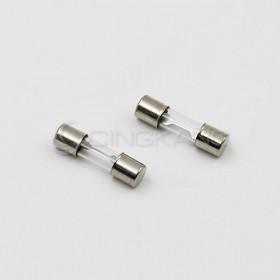 20mm 8A 250V 玻璃保險絲管 鐵頭(10入)