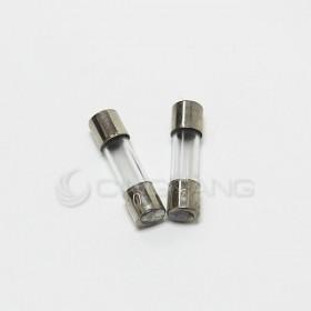 20mm 0.2A 250V 玻璃保險絲 鐵頭(2入)