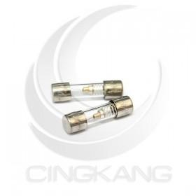 20mm  0.6A 250V 玻璃保險絲 慢熔型(5入)