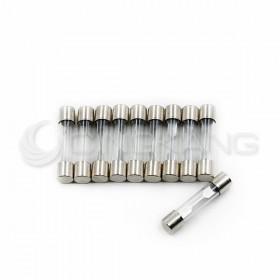 30mm 8A 250V 玻璃保險絲管 鐵頭(10入)