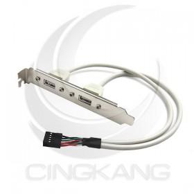 USB2.0 主機板線 Y型2x5 (US-1)