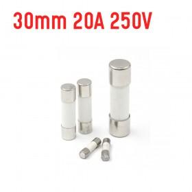 30mm 20A 250V 陶瓷保險絲管 鐵頭 (100入/盒)