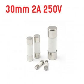 30mm 2A 250V 陶瓷保險絲管 鐵頭 (1入)