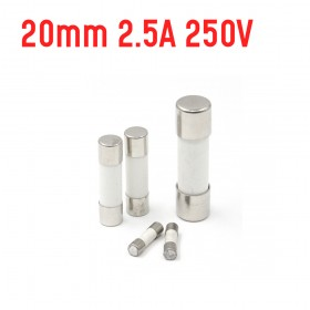 20mm  2.5A 250V 陶瓷保險絲管 鐵頭 快熔(2入)