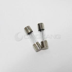 20mm  20A 250V 玻璃保險絲 鐵頭 (2入)