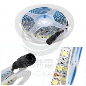 5050 LED白底扁條燈 2米 (白光) 12V+DC線