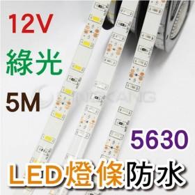5630-12V防水燈條白底扁 綠光 5M (300燈)