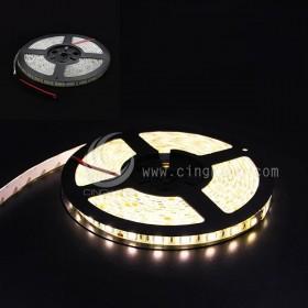 5050 LED 白底防水燈條 24V 暖白色 5M (300燈)