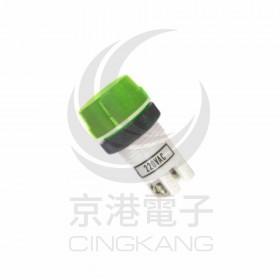 超大型霓虹燈-綠 220V 牙22mm