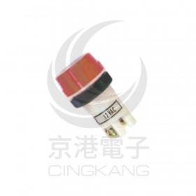 超大型霓虹燈-紅 12V 牙22mm