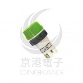 超大型霓虹燈-綠 12V 牙22mm