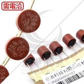 2A 250V 圓柱保險絲/管 (5PCS/入)