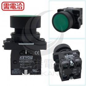 φ22 平頭按鈕綠色 1A1B