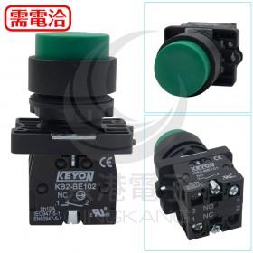 φ22 凸頭綠色按鈕 1A1B